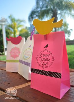 Spring Gift Bag Free Printables - print directly on paper bags for perfect Easter or Spring treat bags. Make cute painted bird clothespins to go close bag.