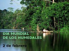 Naturaleza y Voluntariado Ambiental: 2 de Febrero, Día Mundial de los Humedales
