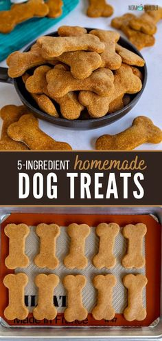 Spoil your pets with love from Homemade Dog Treats! This easy recipe is made in one bowl with just 5 ingredients. Flavored with peanut butter and pumpkin, these simple and delicious treats resembling sugar cookies are sure to be a hit! Try them in applesauce and oats! Dog Cookie Recipes, Easy Dog Treat Recipes, Homemade Dog Cookies, Dog Biscuit Recipes, Homemade Dog Food, Dog Food Recipes, Pumpkin Dog Treats Homemade, Homemade Dog Biscuits Recipe Easy, Doggie Cookies Recipe