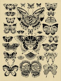 Butterfly Chart (Kyler Martz) Tags: black illustration butterfly print screenprint silkscreen stipple