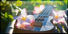 Just picked up your first ukulele? Thinking about starting to play? Read these 10 tips first! (free ukulele guide)