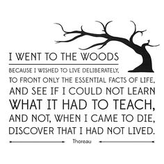 one of my favorite quotes from walden. Thoreau