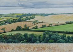 'Over the Barley Field' - Oil on board by Hamish Baird. 35.5cm x 28cm. £275