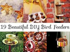 DIY birdfeeders