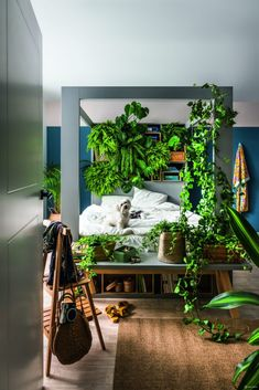 Botanique Café Bar Plantas: Urban Jungle with a Cozy, Imperfect Twist Oxalis Triangularis, Café Bar, Wholesale Home Decor, Modern Tropical, Dark Interiors, Cafe Interior, Interior Plants, Double Beds, Store Design