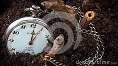 Conceptual photo of a vintage clock lost in the woods.  #dreamstime #photography #oldclock #vintage #lost #treasure #jewelry #jewels