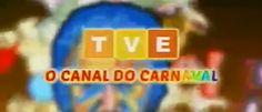 TVE Bahia transmite todas as festas do carnaval de salvador, confira alguns trechos http://newsevoce.com.br/carnaval/?p=129