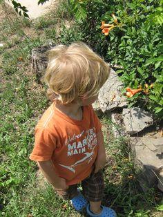 Yep.. orange as well ;-)