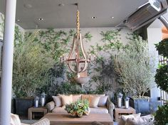 Jon LaDow   Interior Landscaping & Garden Plant Design