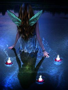 Fairys nighthai
