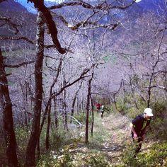les photos du Trail des Citadelles 2012 bientôt en ligne...