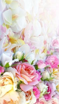 Pink yellow white pastel flowers roses floral iphone wallpaper phone background lock screen by lea Ps Wallpaper, Nature Iphone Wallpaper, Trendy Wallpaper, Flower Wallpaper, Wallpaper Backgrounds, Iphone Wallpapers, Floral Wallpapers, Wallpaper Ideas, Pastel Wallpaper