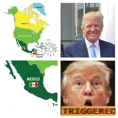 How to trigger Donald Trump Bad Memes, Dankest Memes, Jokes, Triggered Meme, Funny Images, Funny Pictures, Hilarious, Funny Cute, Fresh Memes