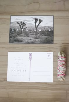 Join Us in the Desert Postcard Save the Dates // Wedding Saguaro ...