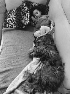 How it is to have a baby or a toddler and a dog or even dogs? I´ve always imagined my life with a hubby, kids and pets, just like we all know this kind of. Dogs And Kids, Two Dogs, Animals For Kids, Sleeping A Lot, Love You Baby, Cute Toddlers, Crazy Life, Having A Baby