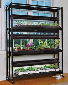 Indoor Garden 3 Tier Sunlite Garden   Can Be Used For Seed Starting Or To  Completely Grow An Indoor Garden