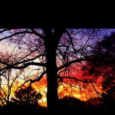 1/18 sunset