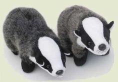 Badgers!