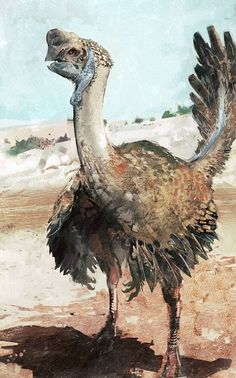 antediluvianechoes:  Oviraptor, Sammy Hill  He was eighteen years old. He had raised almost as many broods, watched them grow and become mot...