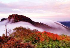 Chunwang Peak, Jiri-san, Gyeongsangbuk-do, South Korea. (source: Joonang Ilbo)