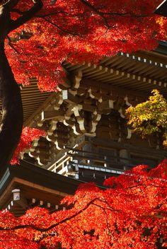 Three-story pagoda at Dojo-ji temple, Tokyo, Japan 道場寺 練馬