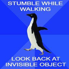 socially awkward penguin, for the win