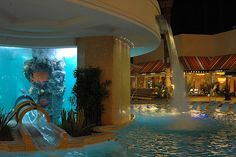 Golden Nugget Pool and Aquarium. This pool has a slide through a shark tank!