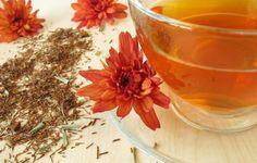 14 Bienfaits du thé rouge rooibos