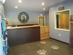Image result for dog grooming salon
