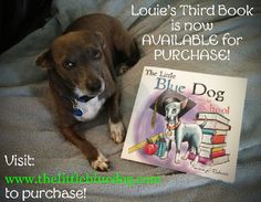 Announcing the release of the 3rd book in the series, The Little Blue Dog Goes To School teaches children about tolerance and the important role service and therapy dogs play in our daily lives. www.thelittlebluedog.com