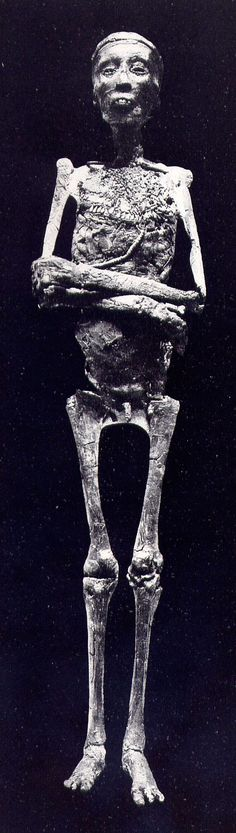 Momia de tut-ank-amon