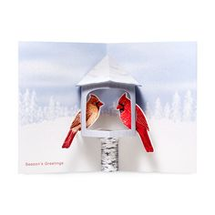 Winter Cardinals Holiday Cards - Set of 8 in color Holiday Cards, Holiday Gifts, Account History, Red Envelope, 3d Cards, Yule, Winter Holidays, Cardinals, Design Elements