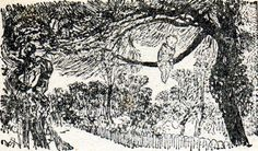 Peter alone at the great tree. Arthur Rackham illustrations from Peter Pan in Kensington Gardens