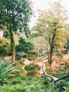 #laos #vangvieng #travel Vientiane, Laos People, Continents, Vietnam, World, Travel, Trips, Lugares, Cambodia