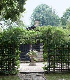 Framed by wisteria, a grecian-style planter holds a tangle of geraniums and sweet-potato vines.    #gardens #entryways