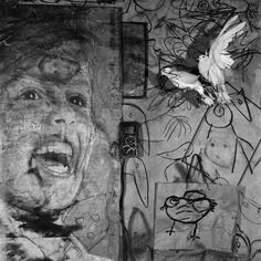 Roger Ballen - Upcoming Series