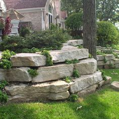Natural Ledgerock Outcropping Stone was used to create a natural retaining wall to support the fireplace patio and preserve the mature oak tree. Perennial Plantings were installed within the retaining wall to add color and soften the appearance.
