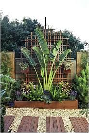 Image Result For Small Tropical Garden Ideas Uk Backyard Landscaping Designs Small Backyard Landscaping Tropical Landscaping