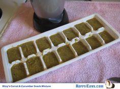 DIY Guinea Pig Snack: Frozen Veggie Cubes | The Guinea Pig Blog - Happy Cavy