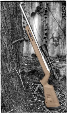 Ruger 10/22 Target w/ Magpul Stock