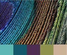 Peacock color scheme: use throughout kitchen, living room and dining room