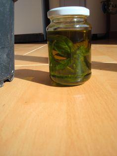 Cómo preparar aceite de Albahaca Bien Tasty, Vinager, Basil Oil, Food Hacks, Pickles, Lemonade, Cooking Tips, Mason Jars, Food Porn