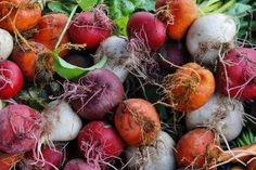 Punch - Bar Tartine's Beet and Rye Kvass Fresh Beets, Mixed Vegetables, Veggies, Garden Seeds, Garden Plants, Health Advice, Rye, Roots