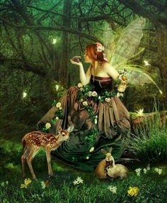 deer, bunnies, Fairy, Magia...!