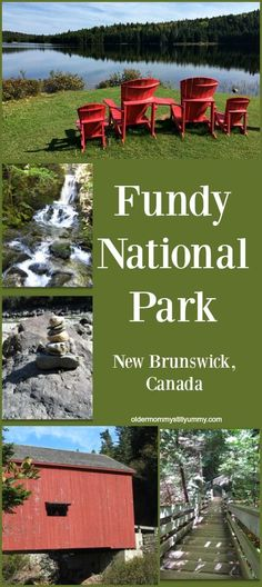 What we saw on did on our day trip to breathtakingly beautiful Fundy National Park which is located in New Brunswick, Canada Vacation Destinations, Dream Vacations, Vacation Places, Vacation Spots, New Brunswick, Travel Goals, Travel Tips, Travel Hacks