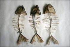 Silk and cotton fish skeletons textile art taxidermy style The Shape Of Water, Mister Finch, Textiles, Fish Art, Rook, Soft Sculpture, Fabric Art, Medium Art, Textile Art