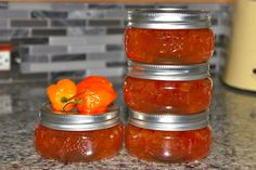 Habanero Pepper Jelly on MyRecipeMagic.com and www.anniebakes.net