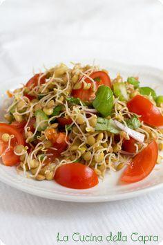 Insalata mediterranea con lenticchie germogliate