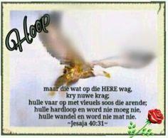 Hoop Scripture Verses, Afrikaans, Fun Facts, Wisdom, Faith, Words, Quotes, Interesting Facts, Hoop