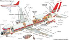Art:An illustration shows cross sections of a Boeing 737 passenger jet. Aviation Engineering, Aerospace Engineering, Mechanical Engineering, Airplane Kids, Aviation Training, Civil Air Patrol, Aircraft Parts, Aircraft Maintenance, Aviation Industry